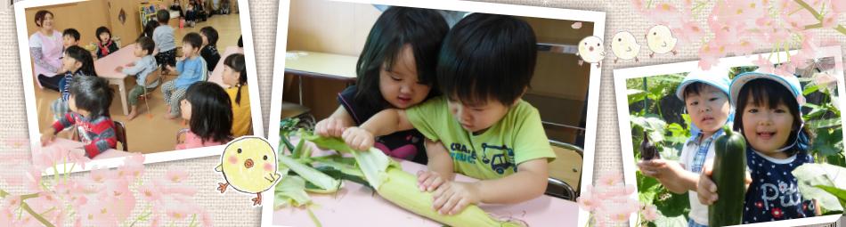 中津川市の保育園は坂本さくら保育園